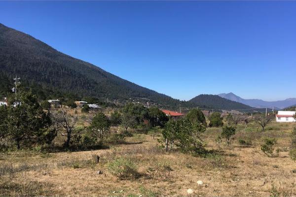 Foto de terreno habitacional en venta en lote 2 parcela 26, los lirios, arteaga, coahuila de zaragoza, 13313976 No. 07