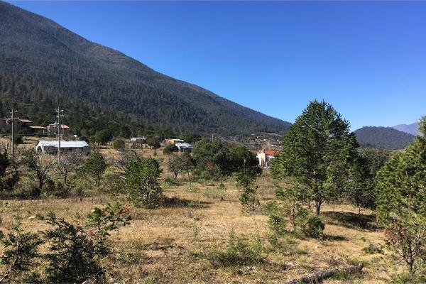 Foto de terreno habitacional en venta en lote 2 parcela 26, los lirios, arteaga, coahuila de zaragoza, 13313976 No. 09