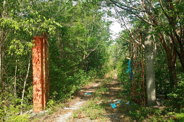 Foto de terreno habitacional en venta en lote 22 , leona vicario, felipe carrillo puerto, quintana roo, 3466558 No. 08
