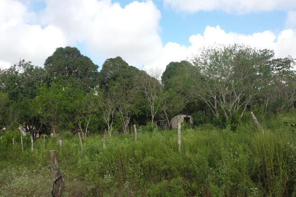 Foto de rancho en venta en lote 3 (coyolito zona 1) , coyolitos, tampico alto, veracruz de ignacio de la llave, 8384160 No. 01