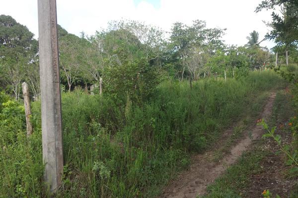 Foto de rancho en venta en lote 3 (coyolito zona 1) , coyolitos, tampico alto, veracruz de ignacio de la llave, 8384160 No. 03