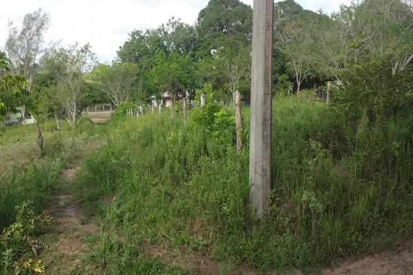 Foto de rancho en venta en lote 3 (coyolito zona 1) , coyolitos, tampico alto, veracruz de ignacio de la llave, 8384160 No. 04