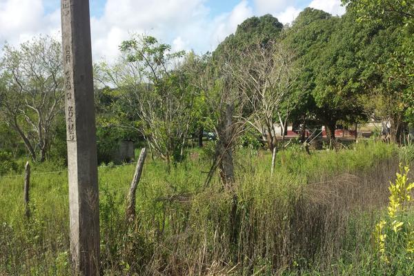 Foto de rancho en venta en lote 3 (coyolitos zona 1) , coyolitos, tampico alto, veracruz de ignacio de la llave, 8384251 No. 03