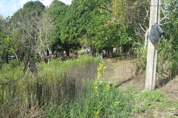 Foto de rancho en venta en lote 3 (coyolitos zona 1) , coyolitos, tampico alto, veracruz de ignacio de la llave, 8384251 No. 05