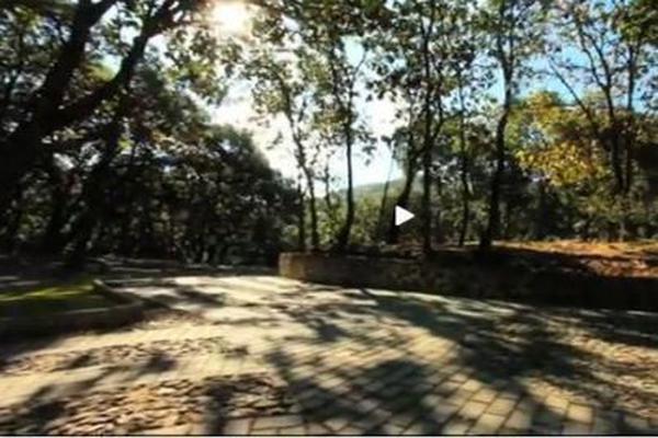 Foto de terreno habitacional en venta en lote 3 manzana 2 seccion plus , tequila centro, tequila, jalisco, 9171961 No. 02