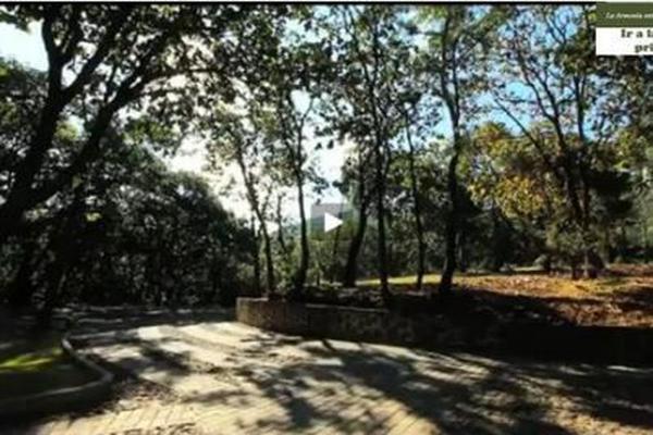 Foto de terreno habitacional en venta en lote 3 manzana 2 seccion plus , tequila centro, tequila, jalisco, 9171961 No. 10