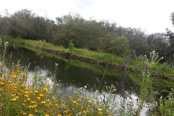 Foto de terreno habitacional en venta en lote 5 d valle santana , cuadrilla de dolores, valle de bravo, méxico, 5723721 No. 02