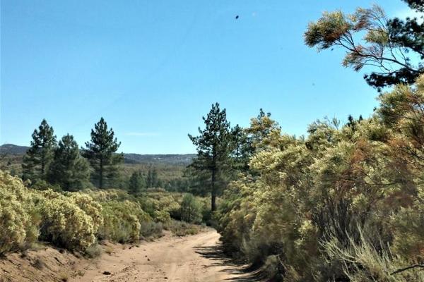 Foto de terreno comercial en venta en lote 64 z-1 p1/1, sierra de juarez , rosa de castilla, ensenada, baja california, 9209314 No. 05