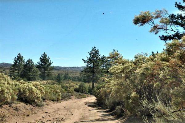 Foto de terreno comercial en venta en lote 64 z-1 p1/1, sierra de juarez , villa de juárez, ensenada, baja california, 9209314 No. 05