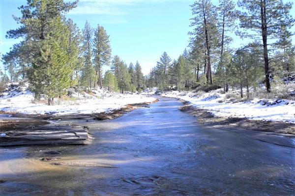 Foto de terreno comercial en venta en lote 64 z-1 p1/1, sierra de juarez , villa de juárez, ensenada, baja california, 9209314 No. 06