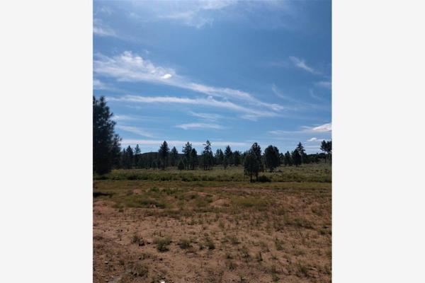 Foto de terreno comercial en venta en lote 64 z-1 p1/1, sierra de juarez , villa de juárez, ensenada, baja california, 9209314 No. 07