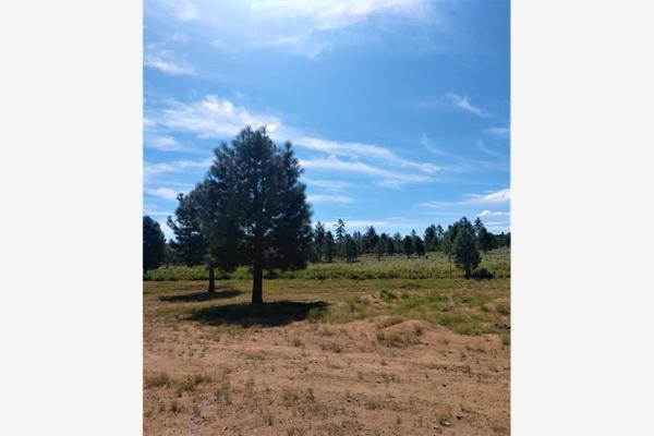 Foto de terreno comercial en venta en lote 64 z-1 p1/1, sierra de juarez , villa de juárez, ensenada, baja california, 9209314 No. 08