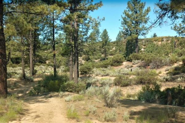 Foto de terreno comercial en venta en lote 64 z-1 p1/1, sierra de juarez , villa de juárez, ensenada, baja california, 9209314 No. 11