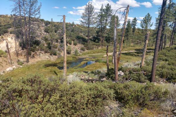 Foto de terreno comercial en venta en lote 64 z-1 p1/1, sierra de juarez , villa de juárez, ensenada, baja california, 9209314 No. 12