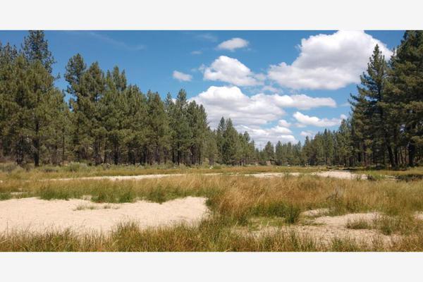 Foto de terreno comercial en venta en lote 64 z-1 p1/1, sierra de juarez , villa de juárez, ensenada, baja california, 9209314 No. 13