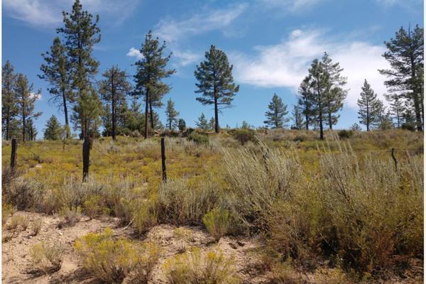 Foto de terreno comercial en venta en lote 64 z-1 p1/1, sierra de juarez , villa de juárez, ensenada, baja california, 9209314 No. 14
