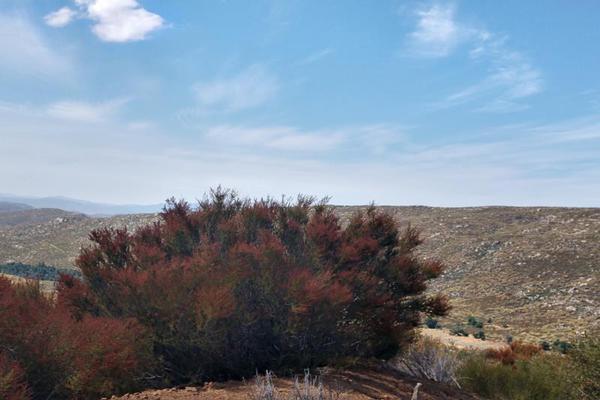 Foto de terreno comercial en venta en lote 64 z-1 p1/1, sierra de juarez , villa de juárez, ensenada, baja california, 9209314 No. 17