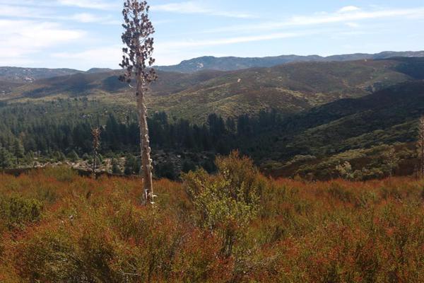 Foto de terreno comercial en venta en lote 64 z-1 p1/1, sierra de juarez , villa de juárez, ensenada, baja california, 9209314 No. 18