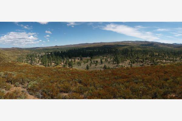 Foto de terreno comercial en venta en lote 64 z-1 p1/1, sierra de juarez , villa de juárez, ensenada, baja california, 9209314 No. 20