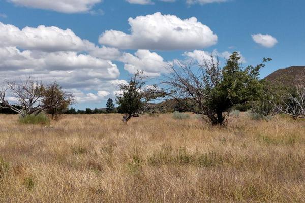 Foto de terreno comercial en venta en lote 64 z-1 p1/1, sierra de juarez , villa de juárez, ensenada, baja california, 9209314 No. 23
