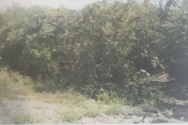 Foto de terreno habitacional en venta en luis donaldo colosio , san gabriel, san gabriel, jalisco, 14031809 No. 03
