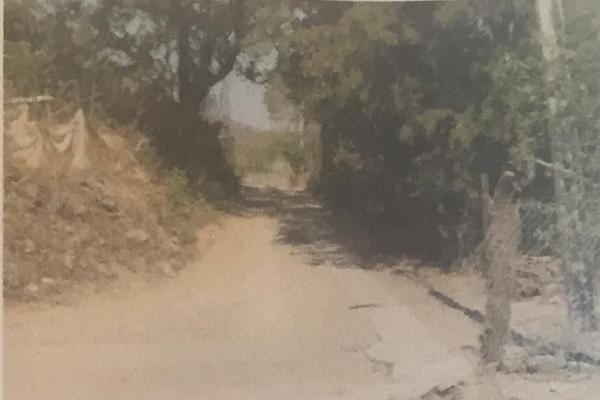 Foto de terreno habitacional en venta en luis donaldo colosio , san gabriel, san gabriel, jalisco, 14031809 No. 04