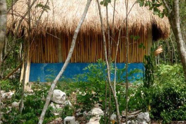 Foto de terreno habitacional en venta en macario gomez manzana 18 lote 52 , tulum centro, tulum, quintana roo, 7506303 No. 02