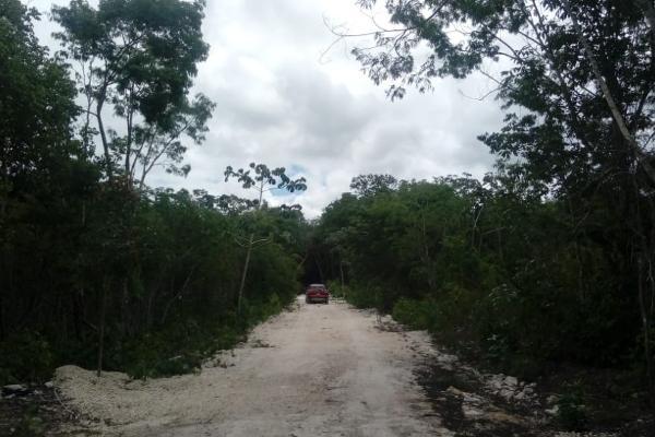 Foto de terreno habitacional en venta en macario gomez manzana 18 lote 52 , tulum centro, tulum, quintana roo, 7506303 No. 03