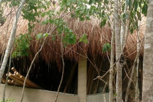 Foto de terreno habitacional en venta en macario gomez manzana 18 lote 52 , tulum centro, tulum, quintana roo, 7506303 No. 04