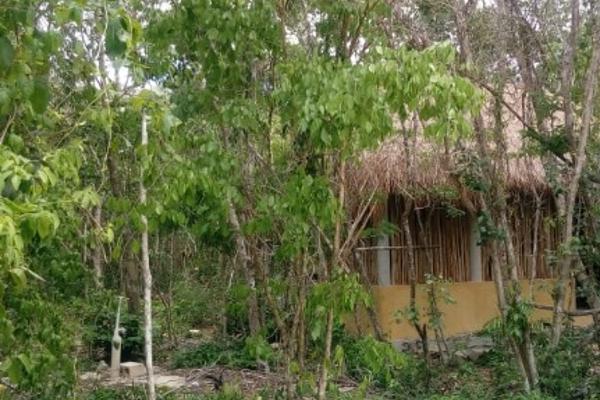 Foto de terreno habitacional en venta en macario gomez manzana 18 lote 52 , tulum centro, tulum, quintana roo, 7506303 No. 06