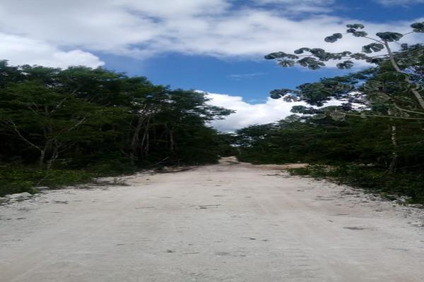 Foto de terreno habitacional en venta en macario gomez manzana 18 lote 52 , tulum centro, tulum, quintana roo, 7506303 No. 07