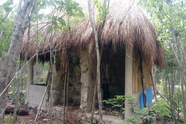 Foto de terreno habitacional en venta en macario gomez manzana 18 lote 52 , tulum centro, tulum, quintana roo, 7506303 No. 10