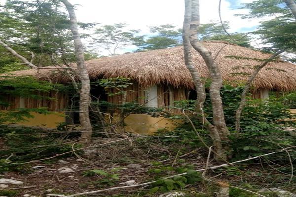 Foto de terreno habitacional en venta en macario gomez manzana 18 lote 52 , tulum centro, tulum, quintana roo, 7506303 No. 13