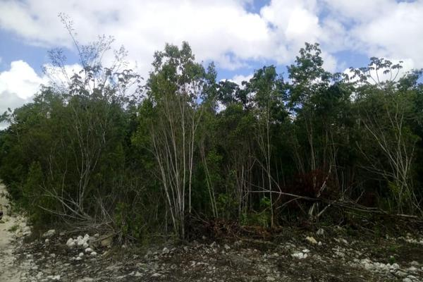Foto de terreno habitacional en venta en macario gomez manzana 18 lote 52 , tulum centro, tulum, quintana roo, 7506303 No. 14