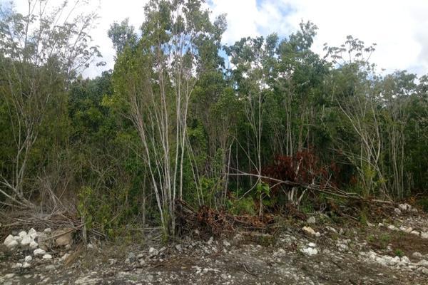 Foto de terreno habitacional en venta en macario gomez manzana 18 lote 52 , tulum centro, tulum, quintana roo, 7506303 No. 15