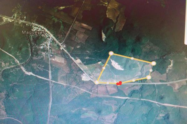 Foto de terreno habitacional en venta en magueyes , villagran, villagrán, tamaulipas, 5630267 No. 01