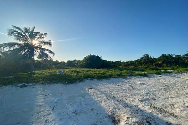 Foto de terreno habitacional en venta en  , mahahual, othón p. blanco, quintana roo, 20078084 No. 02