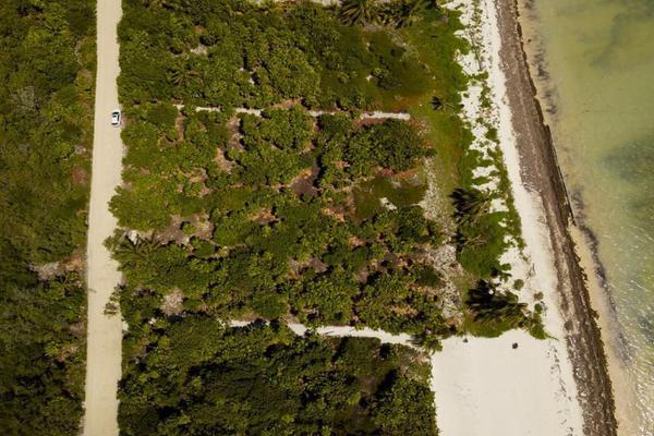 Foto de terreno habitacional en venta en  , mahahual, othón p. blanco, quintana roo, 20078084 No. 03