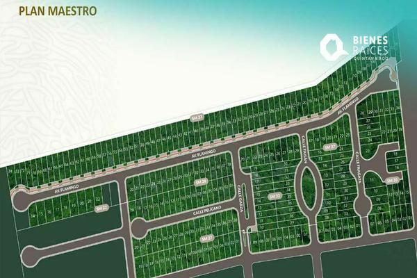 Foto de terreno habitacional en venta en  , mahahual, othón p. blanco, quintana roo, 20537959 No. 03