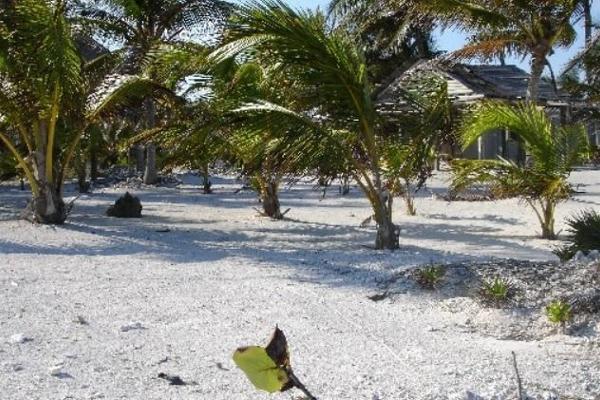 Foto de terreno habitacional en venta en  , mahahual, othón p. blanco, quintana roo, 6169430 No. 02