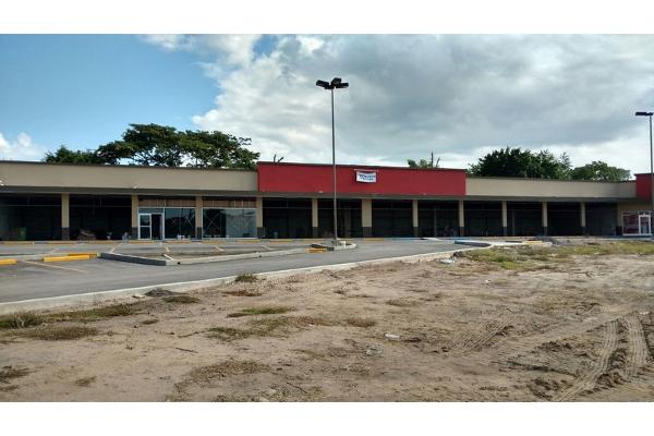 Foto de terreno comercial en renta en manuel cavazos lerma ctr1663 0, altamira centro, altamira, tamaulipas, 2651532 No. 02