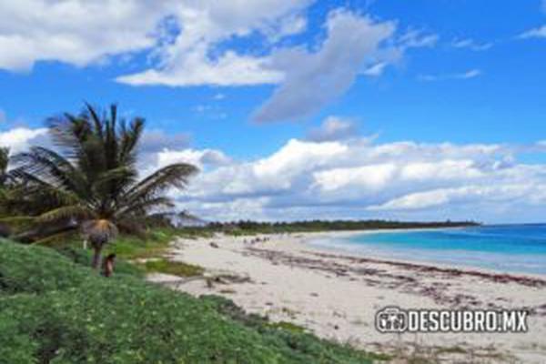 Foto de terreno habitacional en venta en manzana 126 chan chemuyil , ciudad chemuyil, tulum, quintana roo, 8319935 No. 03
