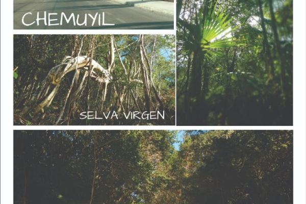 Foto de terreno habitacional en venta en manzana 126 chan chemuyil , ciudad chemuyil, tulum, quintana roo, 8319935 No. 04