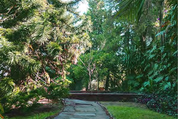Foto de casa en venta en  , maravillas, cuernavaca, morelos, 3430437 No. 13