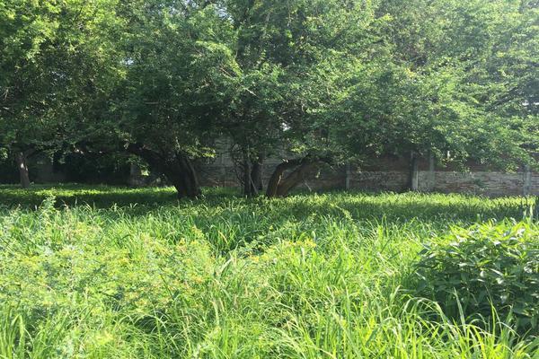 Foto de terreno habitacional en venta en mariano abasolo 77, colima centro, colima, colima, 0 No. 04