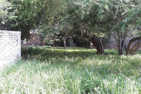 Foto de terreno habitacional en venta en mariano abasolo 77, colima centro, colima, colima, 0 No. 06