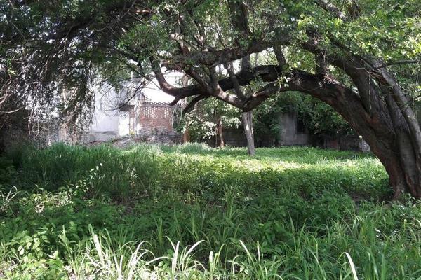 Foto de terreno habitacional en venta en mariano abasolo 77, colima centro, colima, colima, 0 No. 07