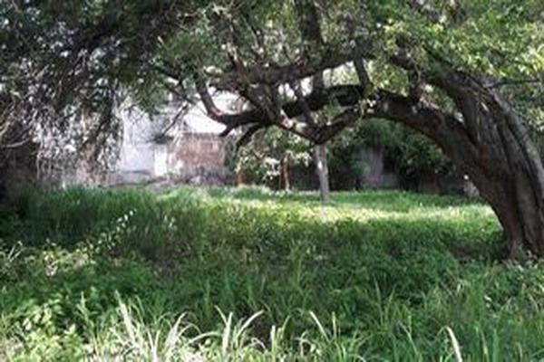 Foto de terreno comercial en venta en mariano abasolo , colima centro, colima, colima, 15657058 No. 02
