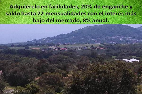 Foto de terreno habitacional en venta en marte 124, nicolás zapata, totolapan, morelos, 8922991 No. 06