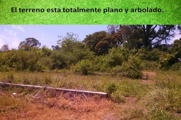 Foto de terreno habitacional en venta en marte 124, nicolás zapata, totolapan, morelos, 8922991 No. 09